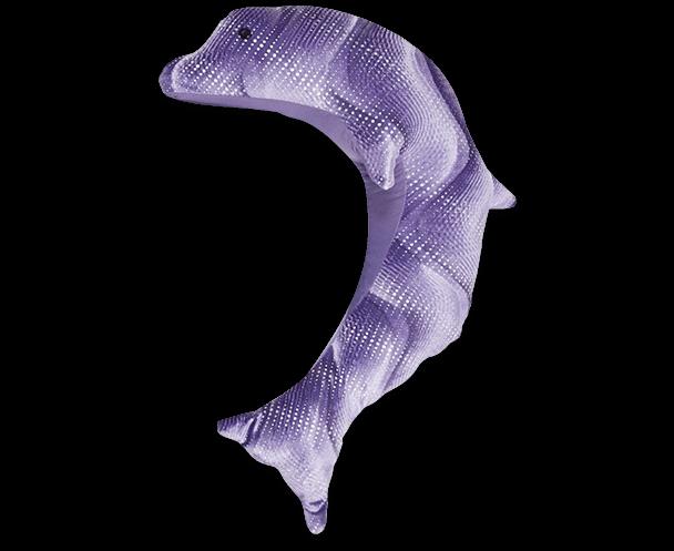 manimo dauphin mauve